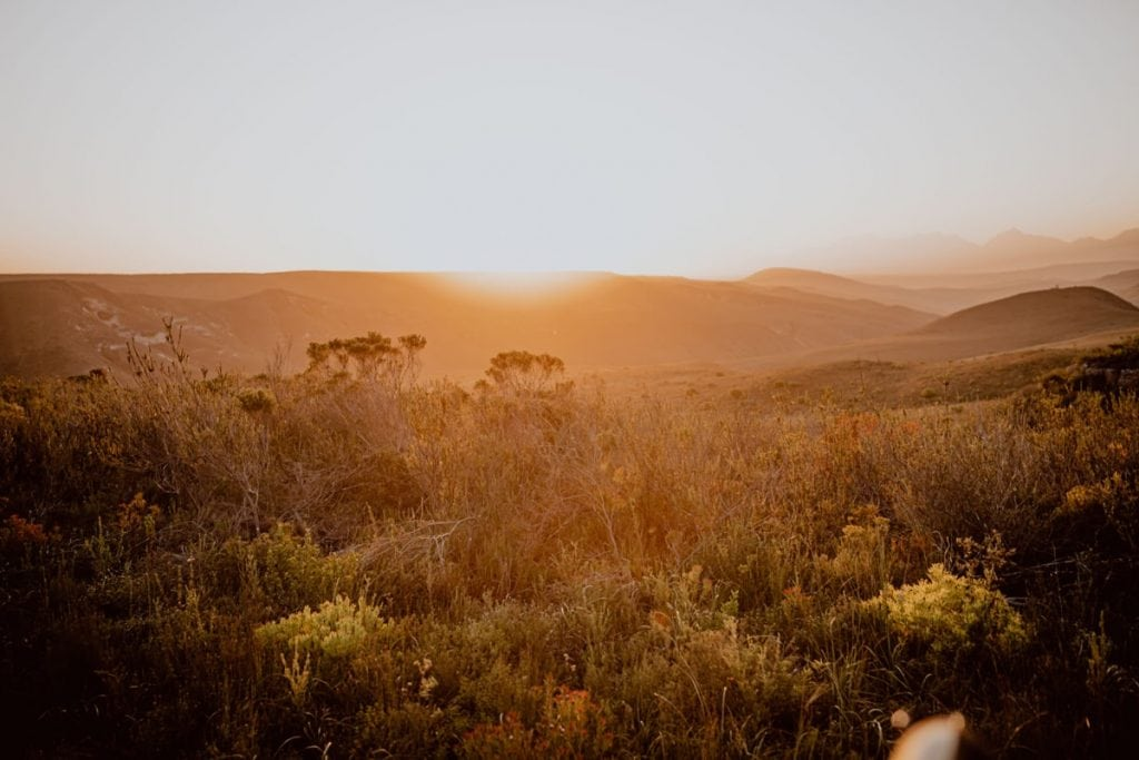 Gondwana South Africa Sunset Safari Wedding